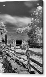 On The Farm Acrylic Print by Joann Vitali