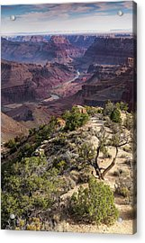 Looking Out The Front Door Acrylic Print