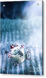 On The Ice Acrylic Print by Jorgo Photography - Wall Art Gallery