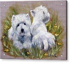 On The Lawn Acrylic Print by Mary Sparrow