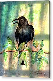 On The Outside Looking In Acrylic Print by Arline Wagner