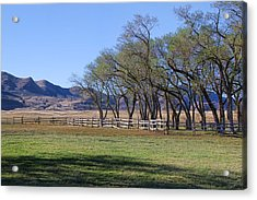 Acrylic Print featuring the photograph On The Ranch by Ely Arsha