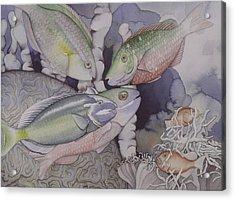 On The Reef Acrylic Print