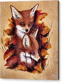 On The Sly Acrylic Print by Merle Blair