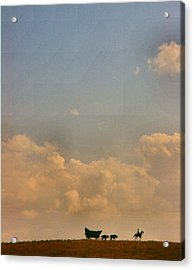 On The Way To Forever Acrylic Print by Lynne and Don Wright