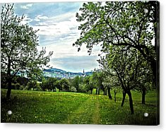 On The Way To Gramastetten ... Acrylic Print