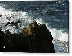 On Watch Acrylic Print by Terry Perham