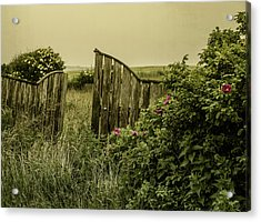 Acrylic Print featuring the photograph Once Was A Garden by Odd Jeppesen