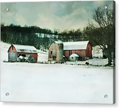Acrylic Print featuring the photograph Once Was Special by Julie Hamilton