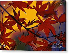 One Autumn Evening By Kaye Menner Acrylic Print