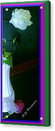 One Carnation And One Rose Bud Acrylic Print