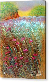 One Day In The Wild Acrylic Print by Jasna Dragun