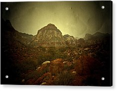 Acrylic Print featuring the photograph One Day by Mark Ross