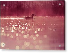 One Fine Morning Acrylic Print by Roeselien Raimond