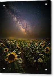 Acrylic Print featuring the photograph One In A Million  by Aaron J Groen