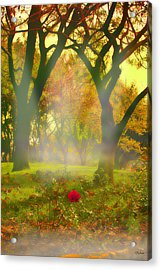 One Last One Acrylic Print by Kat Besthorn