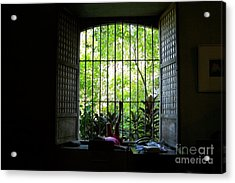 One Lazy Sunday Afternoon By The Window Acrylic Print by Dindin Coscolluela