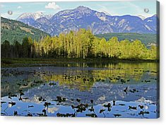One Mile Lake 1 Acrylic Print by Walter Fahmy