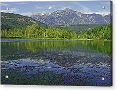 One Mile Lake Reflections 1a Acrylic Print by Walter Fahmy