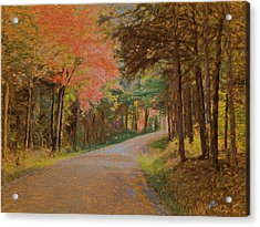 One More Country Road Acrylic Print by John Selmer Sr