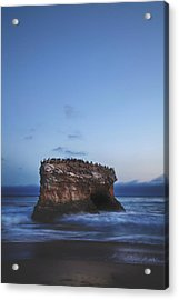One More Night Acrylic Print by Laurie Search