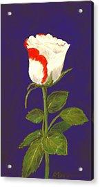 Acrylic Print featuring the pastel One Rose by Anastasiya Malakhova