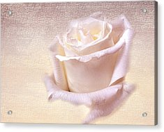 One Rose Is Enough For The Dawn Acrylic Print