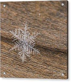Acrylic Print featuring the photograph One Snowflake by Ana V Ramirez