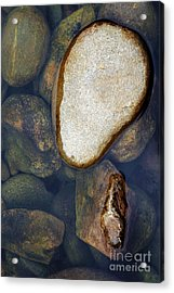 Acrylic Print featuring the photograph One Stone by Allen Carroll
