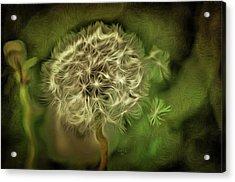 One Woman's Wish Acrylic Print by Trish Tritz