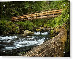 Oneonta Creek Crossing Acrylic Print