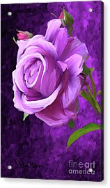 Only A Rose Acrylic Print