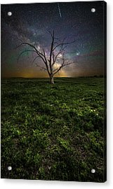 Acrylic Print featuring the photograph Only by Aaron J Groen