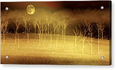 Only At Night Acrylic Print