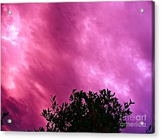 Only Chance To See This Acrylic Print by Chuck Taylor