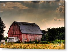 Ontario Barn In The Sun Acrylic Print by Tim Wilson