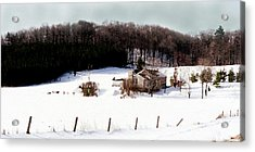 Ontario Winter Acrylic Print by Cabral Stock