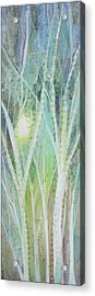 Opalescent Twilight I Acrylic Print by Shadia Derbyshire