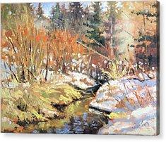 Open Creek Acrylic Print by Larry Seiler