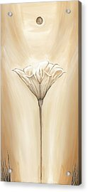Open Flower Acrylic Print by David Junod