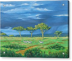 Open Plains Acrylic Print by Deon West
