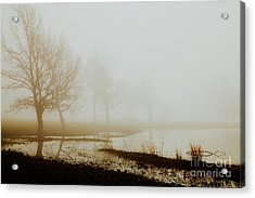 Acrylic Print featuring the photograph Open Space by Iris Greenwell