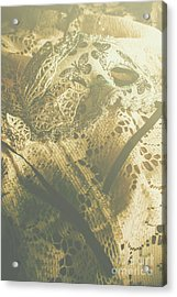 Operatic Art Acrylic Print