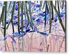 Mangrove Shoreline No. 2 Acrylic Print
