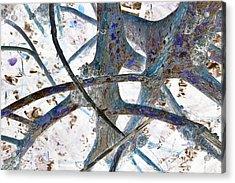 J-lintz - Natural Interchange Acrylic Print