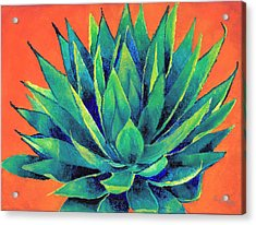 Orange And Agave Acrylic Print