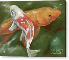 Orange And White Koi With Mossy Stones Acrylic Print