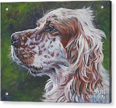 Orange Belton English Setter Acrylic Print