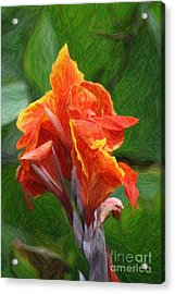 Orange Canna Art Acrylic Print by John W Smith III