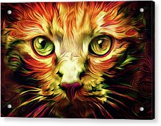 Orange Cat Art - Feed Me Acrylic Print